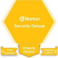Norton Securtiy Deluxe