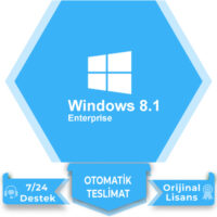 Windows 8.1 Enterprise Lisans